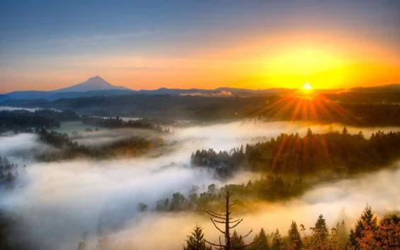 Image result for sunrise photo